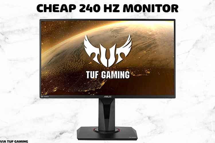 cheap 240hz monitor